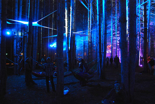 Sherwood Forest at Rothbury